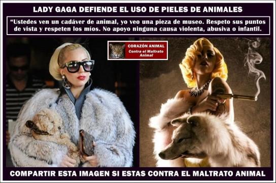 Abrigos de piel maltrato animal