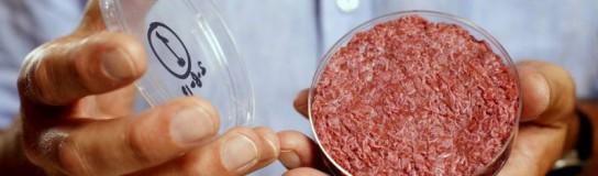 Frankenburger: Carne hecha de células madre