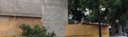 Carta a 7 Eleven por quitar árboles para hacer tienda