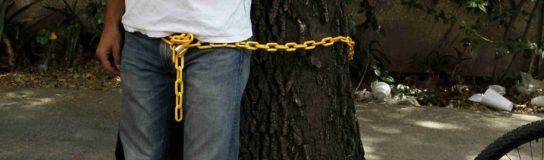 Crónica de la defensa de un árbol