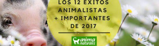 Principales logros para los animales en 2017